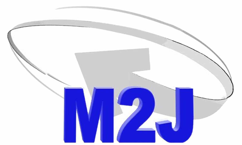 M2J Consulting LLC